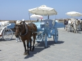 Carriages in Chania